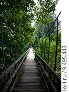 Купить «water forest river bridge footbridge», фото № 9495443, снято 19 августа 2018 г. (c) PantherMedia / Фотобанк Лори