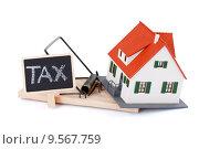 Купить «Tax as a mousetrap», фото № 9567759, снято 31 марта 2020 г. (c) PantherMedia / Фотобанк Лори