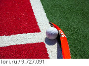 Купить «hockey stick on the field», фото № 9727091, снято 5 июня 2020 г. (c) PantherMedia / Фотобанк Лори