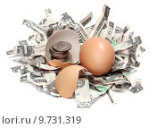 Купить «shredded dollars and eggshell with coins», фото № 9731319, снято 30 мая 2020 г. (c) PantherMedia / Фотобанк Лори