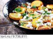 Купить «iron onion fried potato pan», фото № 9736811, снято 16 февраля 2019 г. (c) PantherMedia / Фотобанк Лори