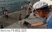 Купить «Мальчик в морской фуражке кормит с рук голубей на городской набережной города Севастополя, Республика Крым», видеоролик № 9802323, снято 15 августа 2015 г. (c) Николай Винокуров / Фотобанк Лори