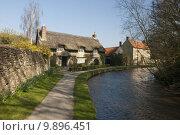 Купить «Thatched cottage. Thorton-Le-Dale. », фото № 9896451, снято 18 октября 2018 г. (c) PantherMedia / Фотобанк Лори