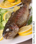 Купить «grilled trout on plate», фото № 9898967, снято 24 февраля 2019 г. (c) PantherMedia / Фотобанк Лори