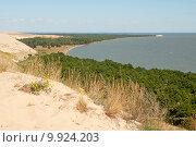 Травы растущие на песке, на заднем плане изгиб Куршской косы (2015 год). Редакционное фото, фотограф Svet / Фотобанк Лори