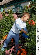 Ребенок поливает цветы. Стоковое фото, фотограф Матвеева Елизавета / Фотобанк Лори