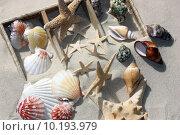Купить «nature beach sand seaside sandy», фото № 10193979, снято 19 июля 2019 г. (c) PantherMedia / Фотобанк Лори