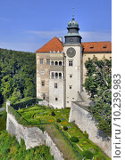 Купить «Castle Pieskowa Skala in Poland», фото № 10239983, снято 11 декабря 2017 г. (c) PantherMedia / Фотобанк Лори
