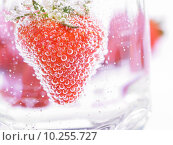 Купить «Strawberry in Mineral water with boobles», фото № 10255727, снято 22 апреля 2018 г. (c) PantherMedia / Фотобанк Лори