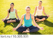 Купить «Peaceful sporty women doing yoga together», фото № 10305931, снято 20 мая 2015 г. (c) Wavebreak Media / Фотобанк Лори