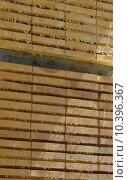 Купить «wood lasting sawmill black forest», фото № 10396367, снято 22 мая 2019 г. (c) PantherMedia / Фотобанк Лори