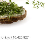 Купить «freshness cress background decoration cut», фото № 10420827, снято 20 июня 2019 г. (c) PantherMedia / Фотобанк Лори