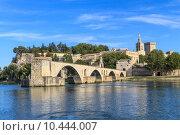 Купить «Avignon Bridge with Popes Palace, Pont Saint-Bénezet, Provence,», фото № 10444007, снято 16 декабря 2017 г. (c) PantherMedia / Фотобанк Лори