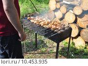 Купить «Аппетитный шашлык на мангале. Пикник», фото № 10453935, снято 22 мая 2015 г. (c) Володина Ольга / Фотобанк Лори
