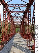 Купить «Старый железнодорожный мост через реку Половинную, Поселок Половинная, Слюдянский район Иркутской области», эксклюзивное фото № 10474335, снято 1 июля 2015 г. (c) Алексей Гусев / Фотобанк Лори