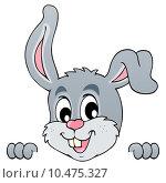 Купить «Image with rabbit theme 5», иллюстрация № 10475327 (c) PantherMedia / Фотобанк Лори