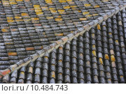Купить «The white lichens of this roof are the protagonists of this photo», фото № 10484743, снято 19 октября 2018 г. (c) PantherMedia / Фотобанк Лори