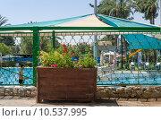 Ограда и клумба с цветами на фоне бассейна (2015 год). Редакционное фото, фотограф Наталия Пылаева / Фотобанк Лори