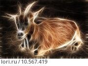 Купить «Goat lay on asphalt and feel calm», фото № 10567419, снято 27 мая 2019 г. (c) PantherMedia / Фотобанк Лори