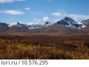 Купить «Tundra in Fall», фото № 10576295, снято 21 февраля 2020 г. (c) PantherMedia / Фотобанк Лори