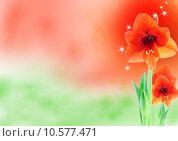Купить «amaryllis background in red and green», фото № 10577471, снято 31 мая 2020 г. (c) PantherMedia / Фотобанк Лори