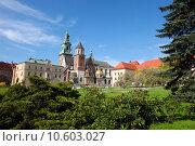 Купить «Wawel cathedral is a Roman Catholic church located on Wawel Hill in Krakow, Poland.», фото № 10603027, снято 19 марта 2019 г. (c) PantherMedia / Фотобанк Лори