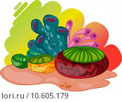 Купить «Colourful oceanic plants», иллюстрация № 10605179 (c) PantherMedia / Фотобанк Лори