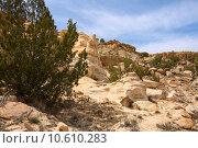 Купить «Treasures of New Mexico», фото № 10610283, снято 21 апреля 2019 г. (c) PantherMedia / Фотобанк Лори