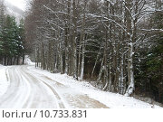 Купить «snow on the roads of the Apennines», фото № 10733831, снято 20 мая 2019 г. (c) PantherMedia / Фотобанк Лори