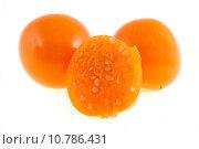 Купить «Плоды физалиса на белом фоне», фото № 10786431, снято 30 июля 2015 г. (c) Литвяк Игорь / Фотобанк Лори