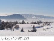 Купить «Jura Mountain in Winter, mont d or area», фото № 10801299, снято 22 июля 2019 г. (c) PantherMedia / Фотобанк Лори