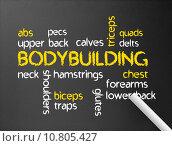 Купить «Dark chalkboard with a Bodybuilding word illustration.», фото № 10805427, снято 17 июля 2019 г. (c) PantherMedia / Фотобанк Лори