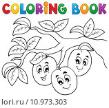 Купить «Coloring book fruit theme 3», иллюстрация № 10973303 (c) PantherMedia / Фотобанк Лори