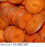 Купить «raw carrot disc dacus carota», фото № 10980947, снято 6 июля 2020 г. (c) PantherMedia / Фотобанк Лори