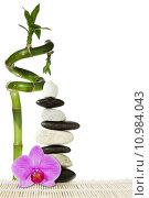 Купить «Purple orchid  and bamboo», фото № 10984043, снято 19 февраля 2019 г. (c) PantherMedia / Фотобанк Лори