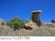 Купить «Ah-Shi-Sle-Pah Wilderness Study Area; New Mexico», фото № 11071759, снято 27 марта 2019 г. (c) PantherMedia / Фотобанк Лори