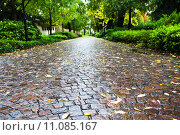 Купить «wet cobble stone path in parco dell arena, Padua», фото № 11085167, снято 20 марта 2019 г. (c) PantherMedia / Фотобанк Лори