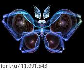 Купить «Cool Butterfly», фото № 11091543, снято 26 мая 2019 г. (c) PantherMedia / Фотобанк Лори