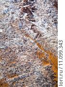 Купить «ice crystals over frozen land», фото № 11099343, снято 19 октября 2019 г. (c) PantherMedia / Фотобанк Лори