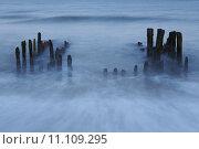 Купить «Sylt (Germany) - Groin in the evening (long time exposure)», фото № 11109295, снято 15 октября 2018 г. (c) PantherMedia / Фотобанк Лори
