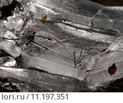 Купить «graphic grey gray ice transparent», фото № 11197351, снято 6 января 2019 г. (c) PantherMedia / Фотобанк Лори
