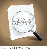Купить «Reviewing Terms of Service», иллюстрация № 11214707 (c) PantherMedia / Фотобанк Лори