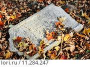 Купить «damaged tomb in forgotten and unkempt Jewish cemetery», фото № 11284247, снято 23 июля 2019 г. (c) PantherMedia / Фотобанк Лори