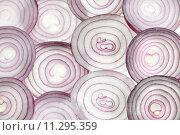 Купить «vegetable sharing onions optional divide», фото № 11295359, снято 21 октября 2018 г. (c) PantherMedia / Фотобанк Лори