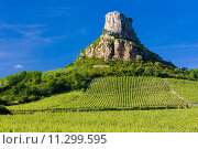 Купить «La Roche de Solutré with vineyards, Burgundy, France», фото № 11299595, снято 19 сентября 2019 г. (c) PantherMedia / Фотобанк Лори