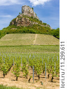 Купить «La Roche de Solutré with vineyards, Burgundy, France», фото № 11299611, снято 19 сентября 2019 г. (c) PantherMedia / Фотобанк Лори
