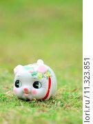 Купить «Chinese style piggy bank on green grass», фото № 11323851, снято 20 февраля 2019 г. (c) PantherMedia / Фотобанк Лори