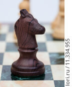 Купить «The knight. Wooden chess piece», фото № 11334955, снято 21 сентября 2019 г. (c) PantherMedia / Фотобанк Лори