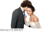 Купить «Groom whispering sweet nothings», фото № 11359471, снято 23 мая 2018 г. (c) PantherMedia / Фотобанк Лори