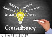 Купить «Consultancy - Business Concept», фото № 11421127, снято 16 июня 2019 г. (c) PantherMedia / Фотобанк Лори